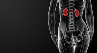 Everything You Need To Know About Women and Kidney Disease