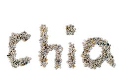 super-foods-chia-seeds