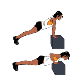 Push Up With Elevated Hands